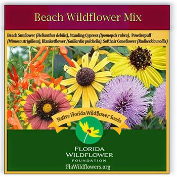 beach wildflower mix