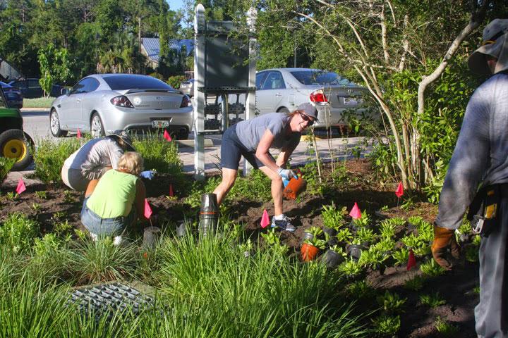 People planting in public garden