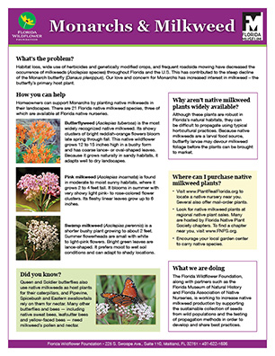 Monarchs and Milkweed handout